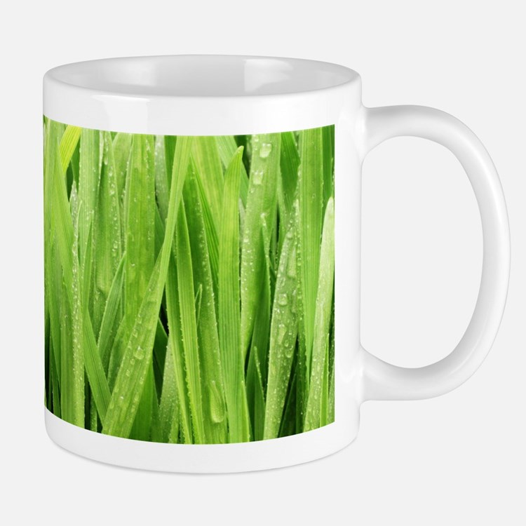 Close Up Grass After A Rainstorm Mug