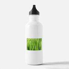 Close Up Grass After A Rainstorm Water Bottle