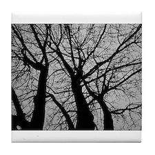 Maple Tree In Winter Fractal Pattern - Landscape T