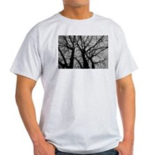 Maple Tree In Winter Fractal Pattern - Landscape T