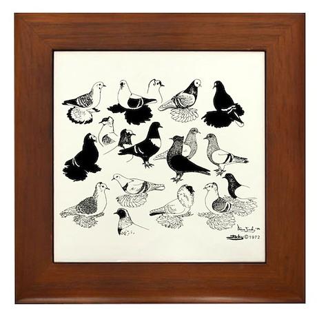 Saxon Color Pigeons Framed Tile