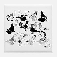 Saxon Color Pigeons Tile Coaster