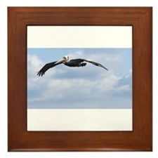 Pelican in Flight Framed Tile