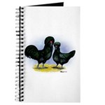 Crevecoeur Chickens Journal