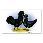 Crevecoeur Chickens Rectangle Sticker
