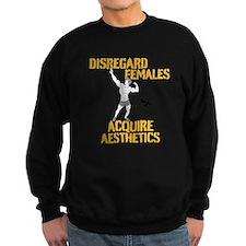 Disregard Females Acquire Aesthetics Jumper Sweater
