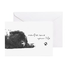 Newf Cards (Pk of 10)