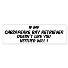 If my Chesapeake Bay Retrieve Bumper Car Sticker