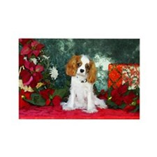 Cavalier King Charles Spaniel Christmas Rectangle