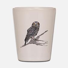 Boobook Owl Shot Glass