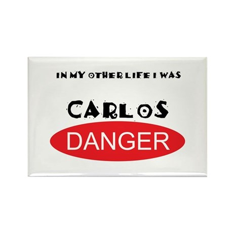 In My Other Life I Was Carlos Danger Rectangle Mag