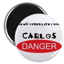 "In My Other Life I Was Carlos Danger 2.25"" Magnet"