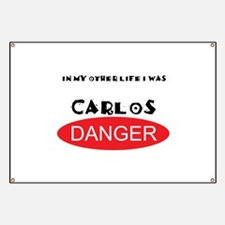 In My Other Life I Was Carlos Danger Banner
