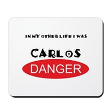 In My Other Life I Was Carlos Danger Mousepad