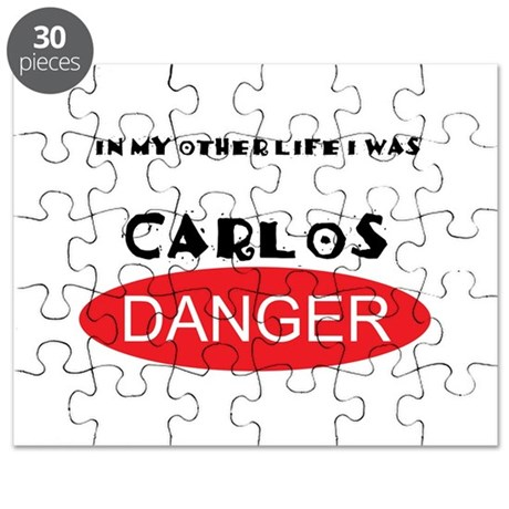 In My Other Life I Was Carlos Danger Puzzle