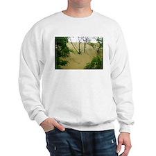 woodsy dune Sweatshirt