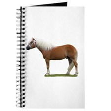 """Haflinger 1"" Journal"