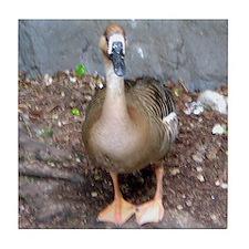 swan goose Tile Coaster