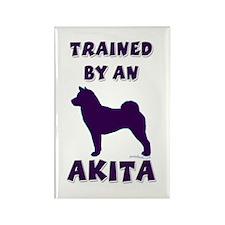Akita Ppl Rectangle Magnet (10 pack)