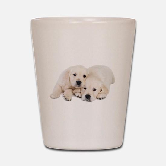 White Labradors Shot Glass