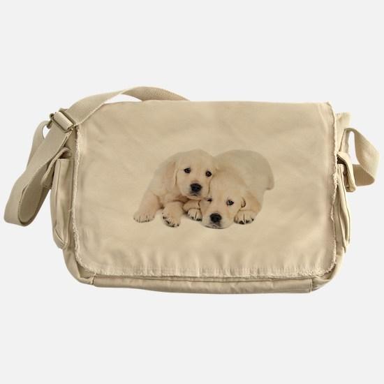 White Labradors Messenger Bag