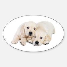 White Labradors Decal