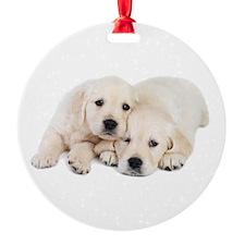 White Labradors Ornament