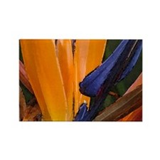 Birds of Paradise 1 Rectangle Magnet