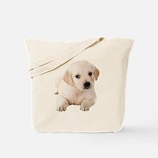 Golden Lab Tote Bag