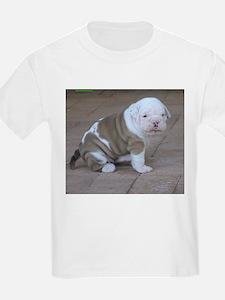 Australian Bulldog Kids T-Shirt