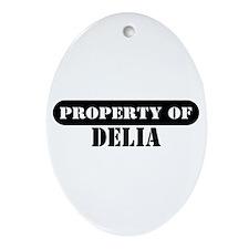 Property of Delia Oval Ornament