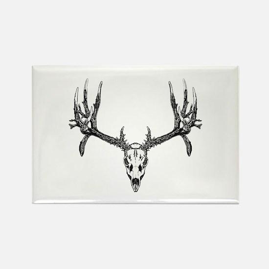 Drop tine buck skull Rectangle Magnet