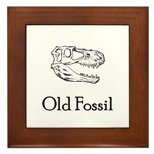 Old Fossil Framed Tile