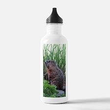 Groundhog Water Bottle