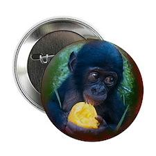 """Cute Adoption 2.25"""" Button (100 pack)"""