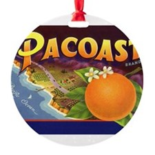 Unique Citrus Ornament