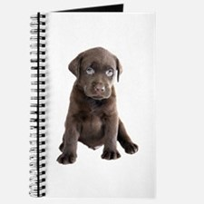 Labrador Puppy Journal