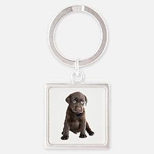 Labrador Puppy Square Keychain