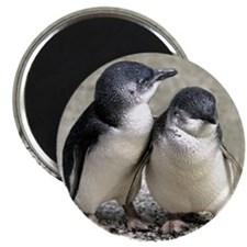 Penguin Buddies Magnet