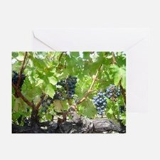 Wine Country Greeting Cards (Pk of 10)