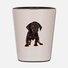 Dachshund Puppy Shot Glass