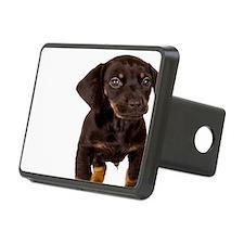 Dachshund Puppy Hitch Cover