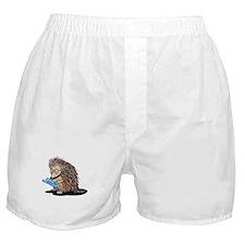 Warm Fuzzy Porcupine Boxer Shorts