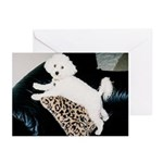 SOPHIE MOUNTAIN CLIMBING GREETING CARDS (6)