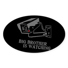 CCTV Big Brother Is Watching Decal