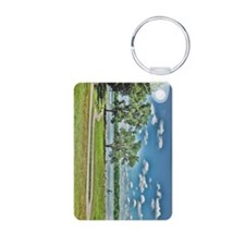 No Alcohol At The Beach Keychains