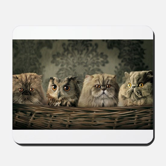 Cute Odd One Out Mousepad