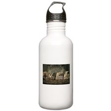 Cute Odd One Out Sports Water Bottle