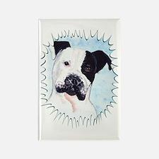 Pitbull Rectangle Magnet (10 pack)