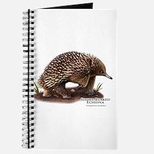 Short-Beaked Echidna Journal